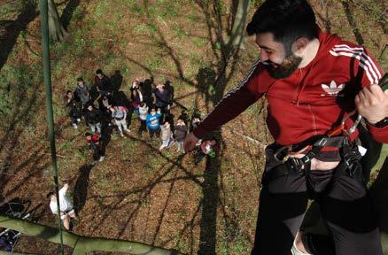 Teamuitje met de Haagse Boomtoppers boomklimmen Den Haag